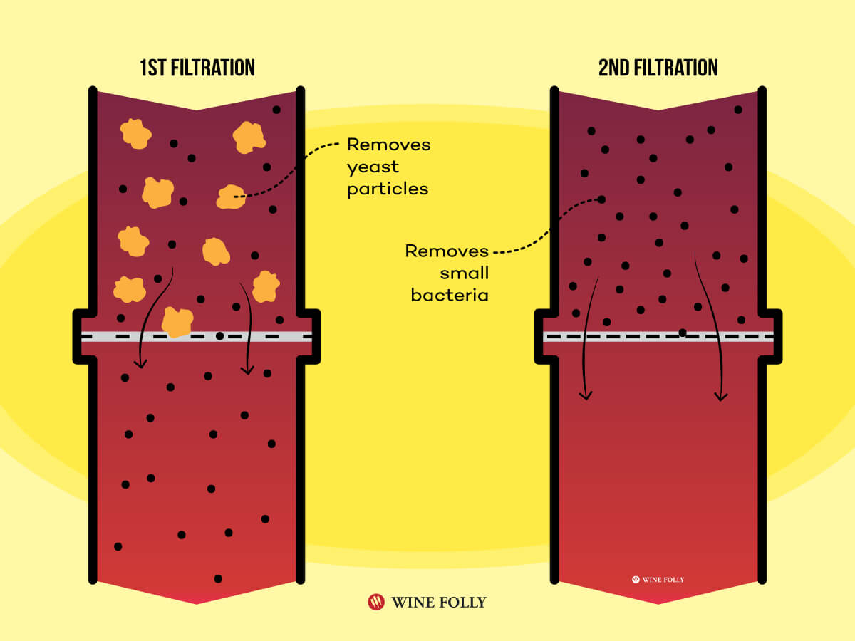 2 filters - Wine Filtration Diagram by Wine Folly