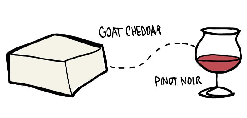 wine-folly-goat-cheese-pairing-003