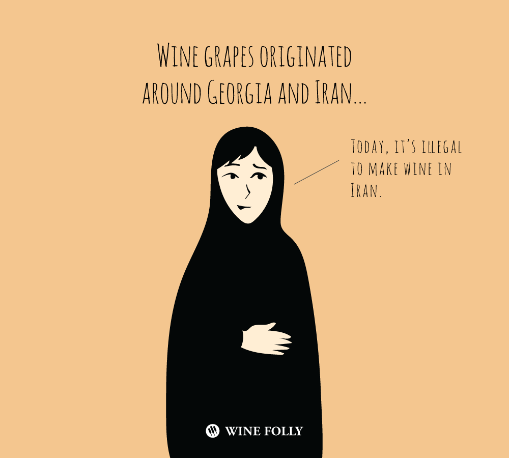 wine-in-iran