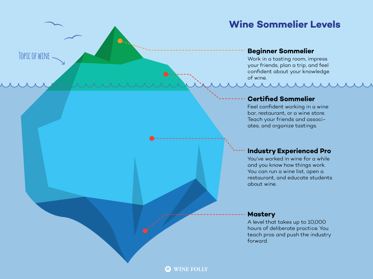 Wine Sommelier Levels Explained - Infographic by Wine Folly