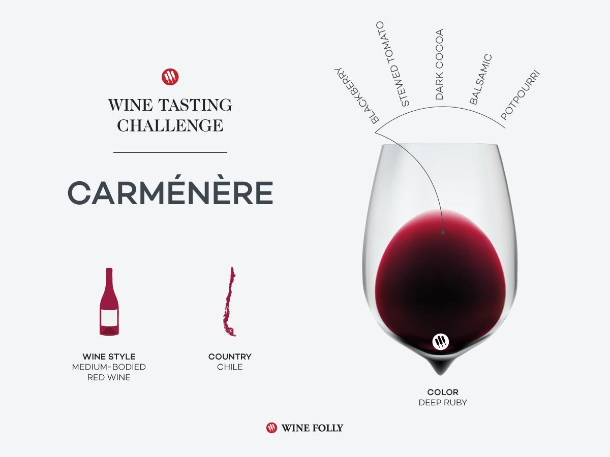 wine-tasting-challenge-carmenere