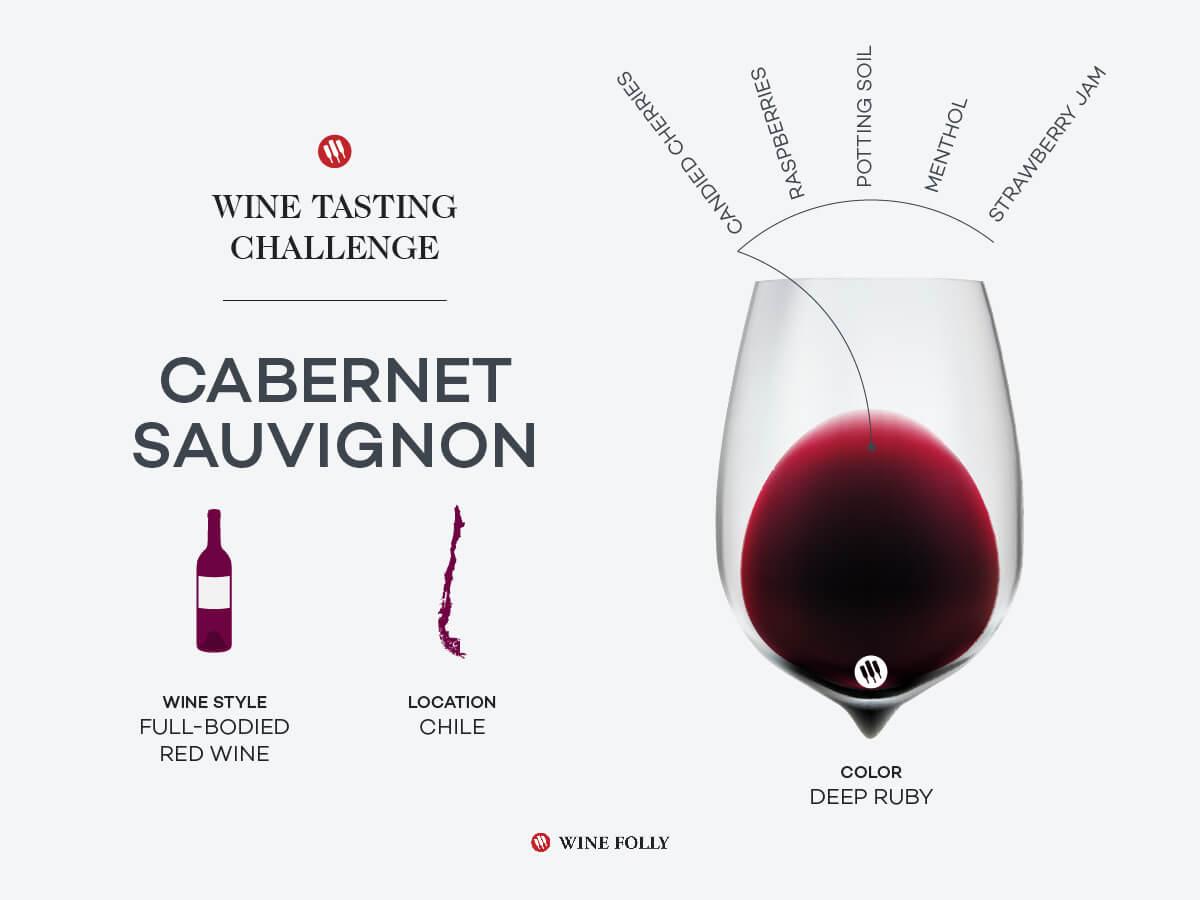 Chilean Cabernet Sauvignon in a glass with region outline