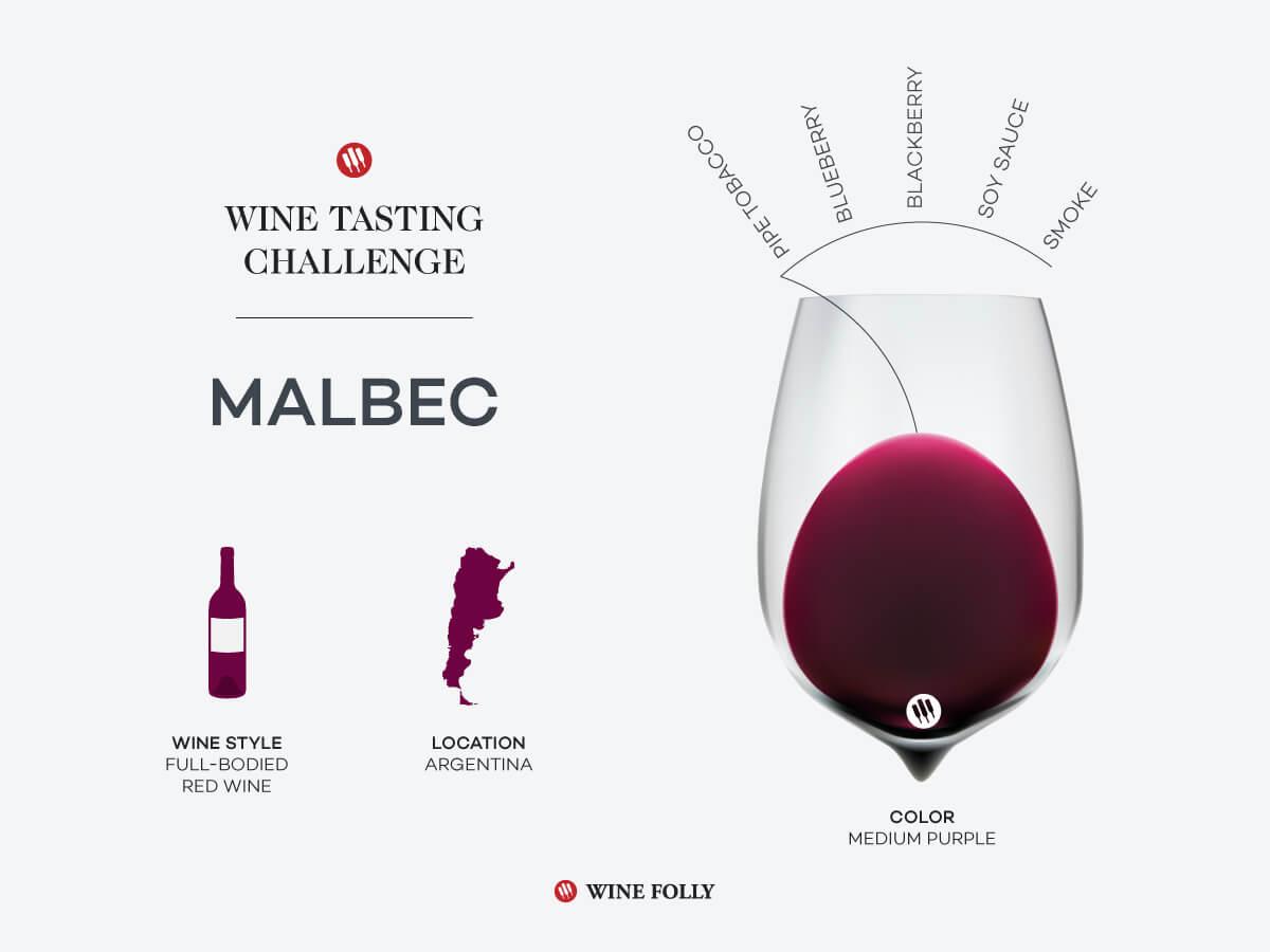 wine-tasting-challenge-malbec-argentina