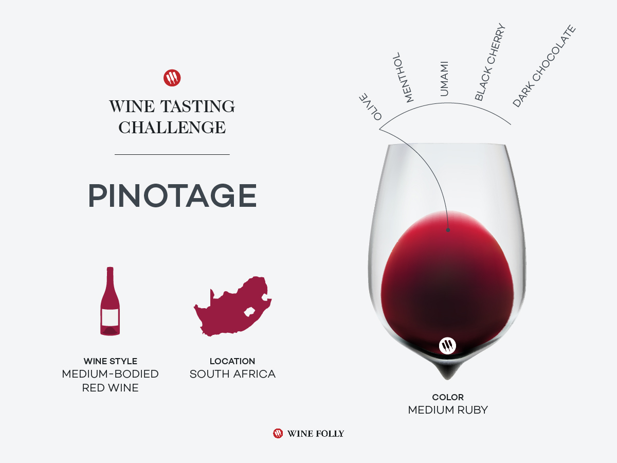 wine-tasting-challenge-south-african-pinotage-1200x900