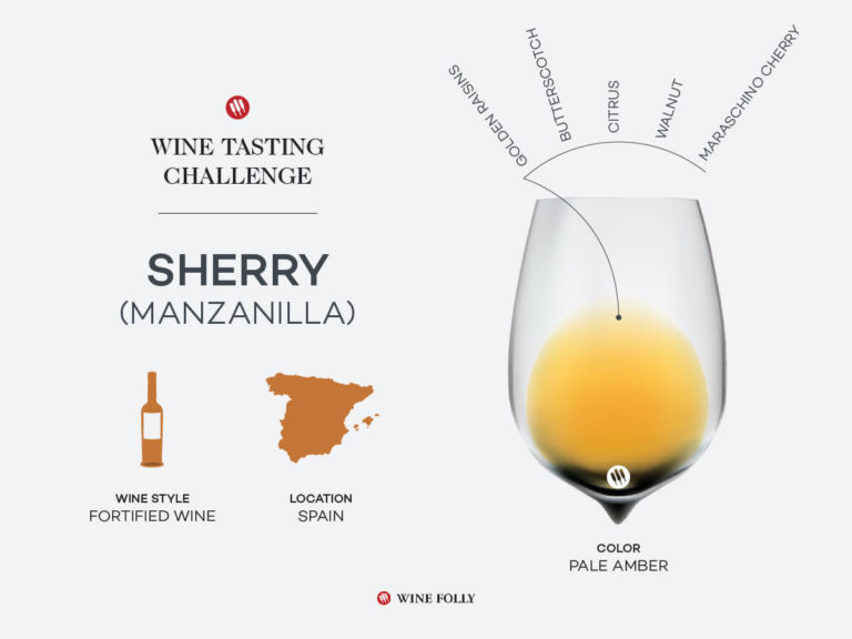 An infographic of Manzanilla Sherry.