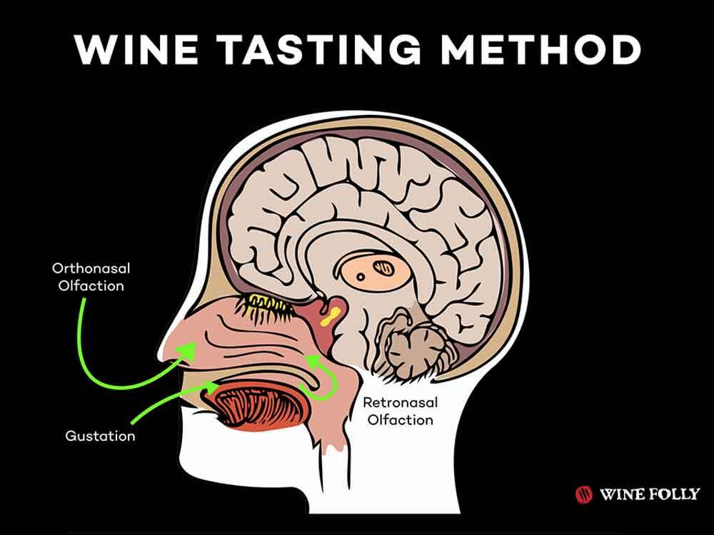 The Wine Tasting Method