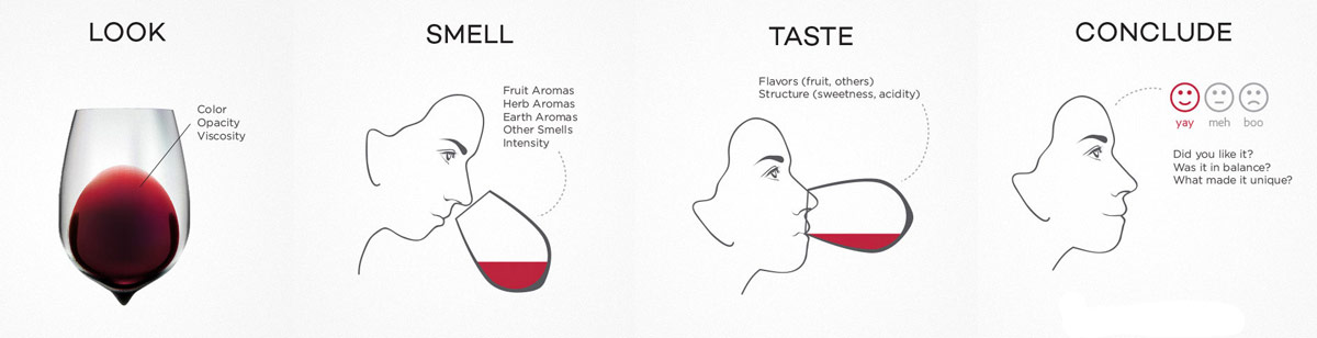 Wine Tasting Method by Wine Folly