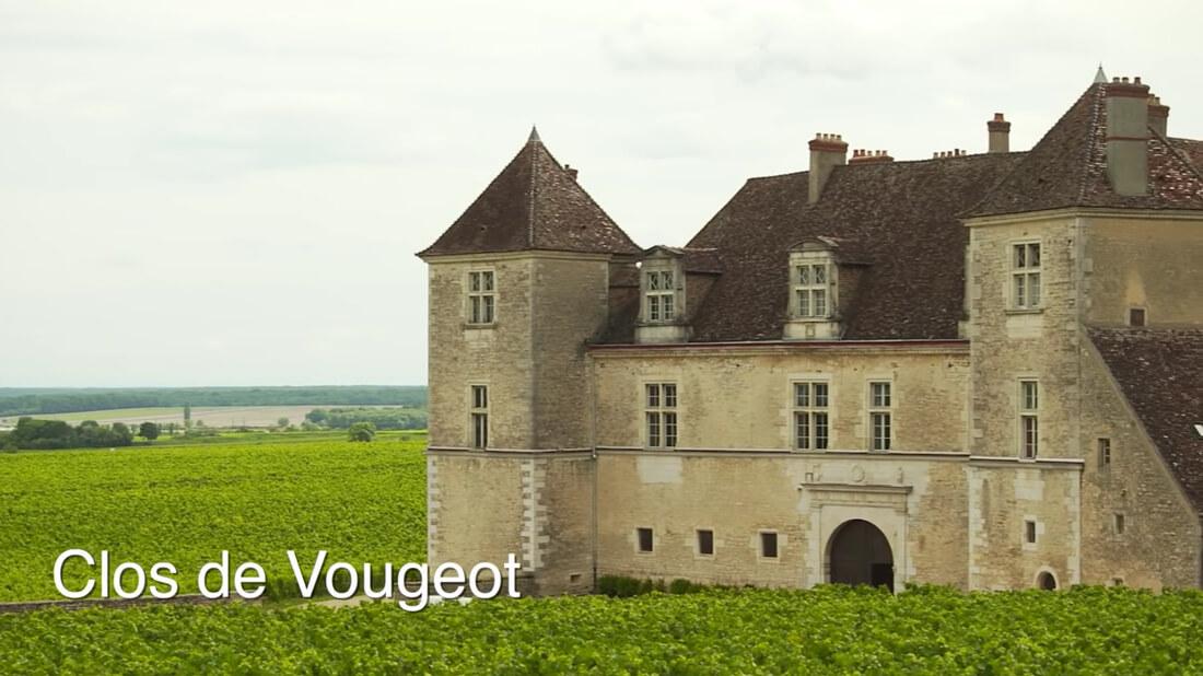 Wine Region - Burgundy - Clos de Vougeot