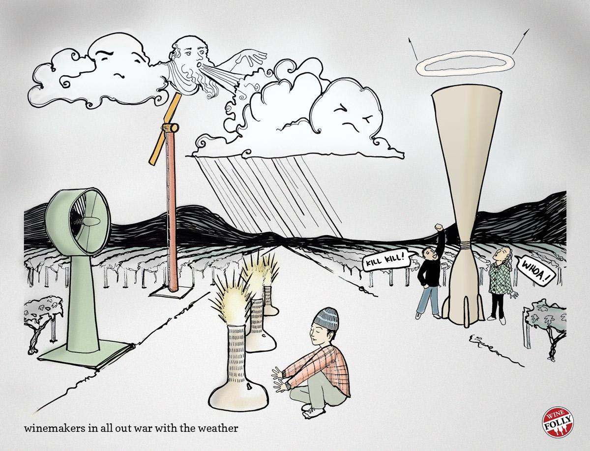 winemakers-battle-bad-weather