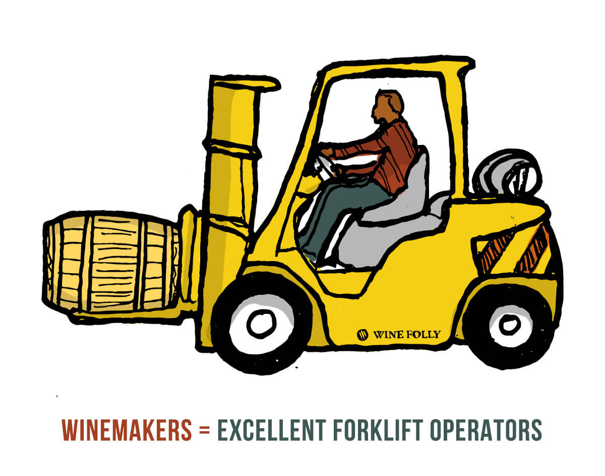 winemakers-drive-forklifts-illustration