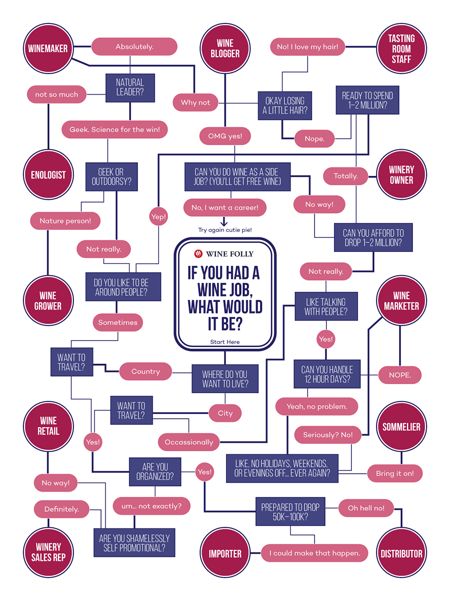 Wine Job Flow Chart (infographic) by Wine Folly