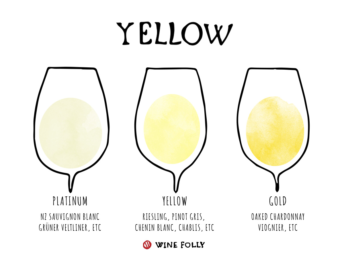 Yellow Wine Color White Wine in Glasses Illustration by Wine Folly