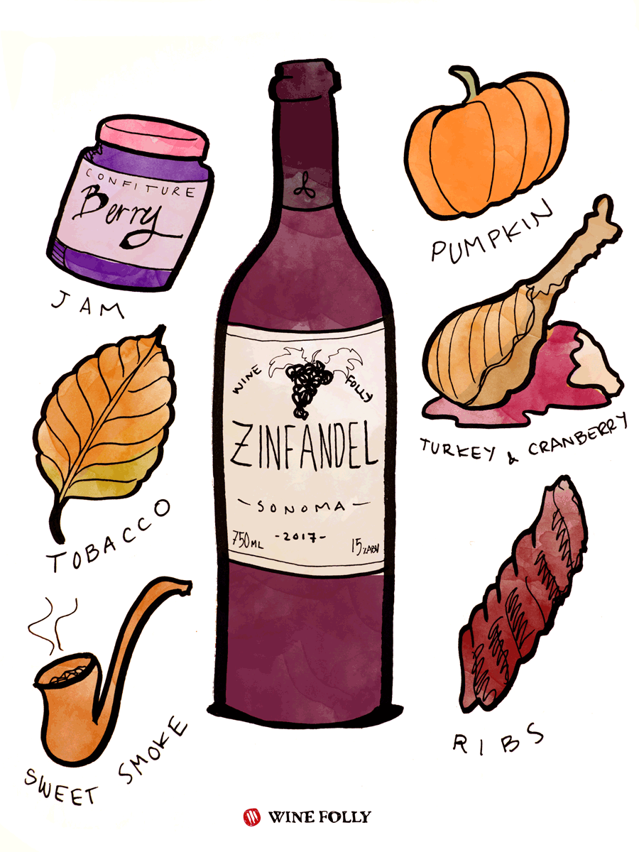Zinfandel Wine Taste & Food Pairing Illustration by Wine Folly