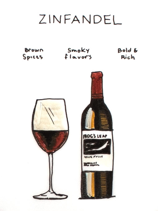 zinfandel-illustration