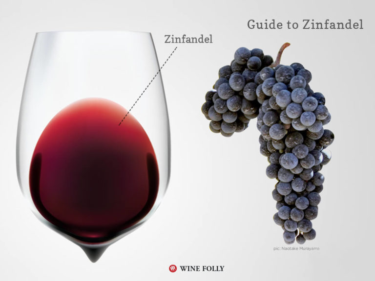 zinfandel-wine-grapes-glass-winefolly-infographic